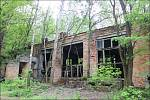 Od černobylské havárie uplynulo 33 let. V uzavřené zóně se dnes daří fauně, budovy postupně pohltila příroda
