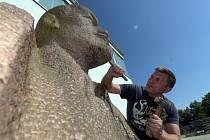 Původní historické sochy komunistických pohlavárů je možné koupit na jedinečné dražbě v Bavorsku