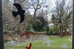 Siluety jiných ptáků fungují. Pokud jsou hustě rozprostřeny po celé ploše skla