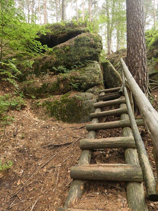 Někde byly na stezce vybudovány i schody, což ale orientačním běžcům závod moc neusnadní.