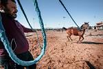 Kategorie Reportáž: Váleční koně v Sýrii