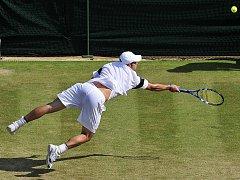 Odvážný skok Andy Roddicka za míčkem na wimbledonské trávě.