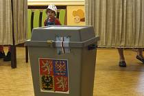 Volební urna. Ilustrační snímek