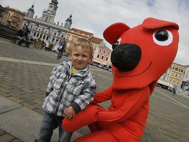 Postavička medvídka Kukyho se v pondělí procházela po českobudějovickém náměstí jako upoutávka na premieru filmu Jana Svěráka.