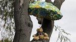Plyšový medvěd sedí na stromě pod deštníkem u jednoho z domů v Christchurchi (na snímku z 28 března 2020)