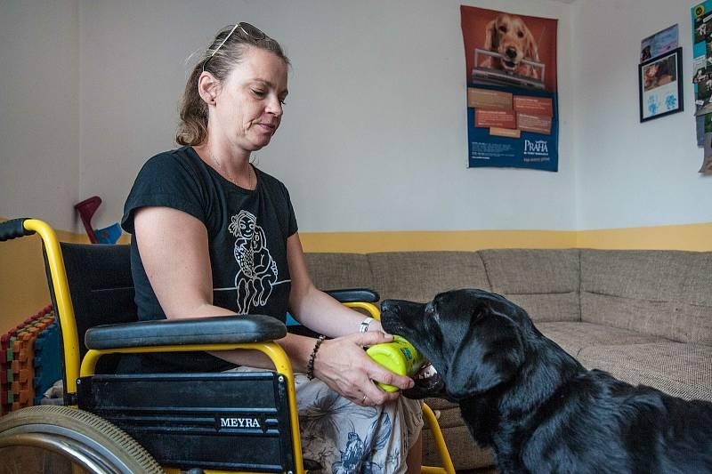Cvičitelka Renata Krejčová vyučuje budoucí psí asistenty všem domácím úkonům.