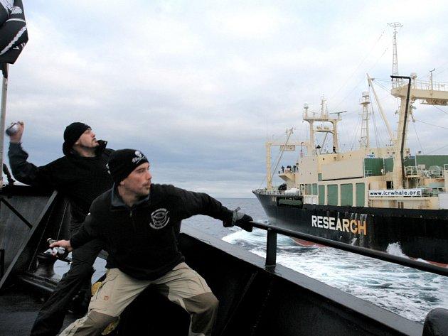Ochranářské organizace tak narušovaly lov velryb, že jich Japonci ulovili  mnohem méně, než chtěli.