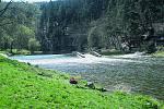 Horní úsek Kamenice je od Josefova dolu nejnáročnější sjízdnou částí řeky. Ipro zkušené vodáky může být extrémní kvůli zatarasenému řečišti aprudkému spádu.
