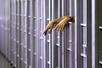 Protikoronnavirová opatření těžce dopadají i na lidi, kteří opouštějí brány vězení a chtějí se začlenit do společnosti.