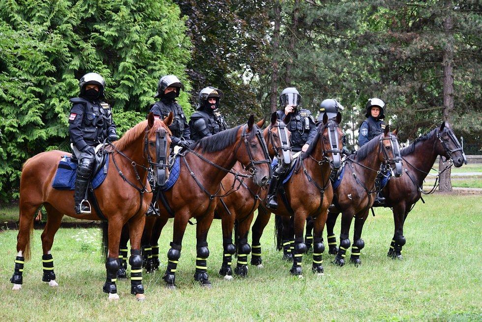 Mezi policejním jezdcem a jeho koněm i přes pracovní přísnost vzniká osobní vztah.