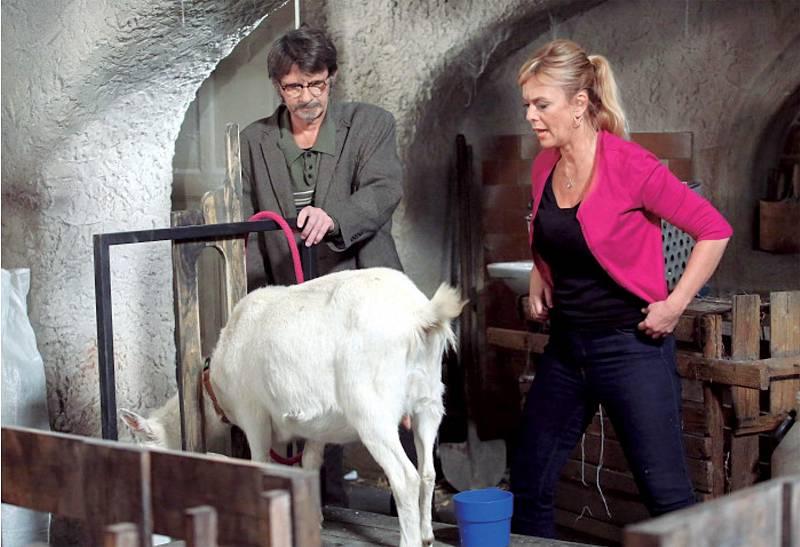 V seriálu Slunečná je jejím ctitelem Jan Šťastný.