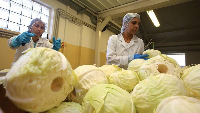 Ve Frutě se zlepšila nejen kvalita, chuť a nezávadnost zdejších produktů, ale usnadnila se i práce zaměstnanců ve výrobě a ve skladech firmy.