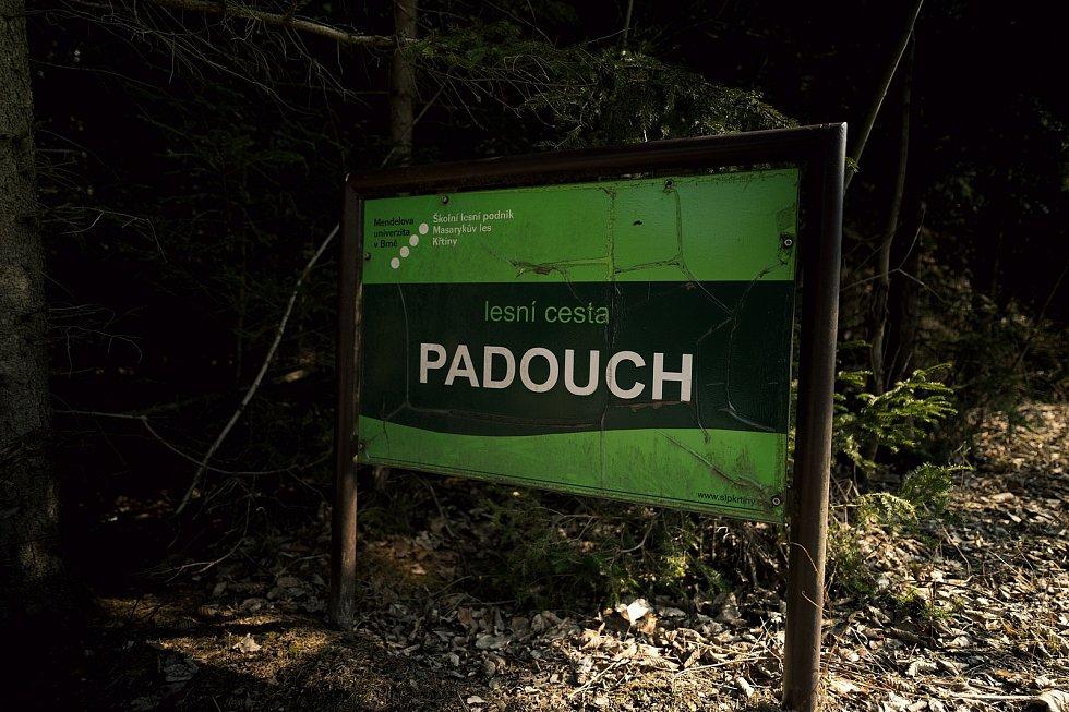 Smíšený les u Habrůvky na Blanensku. Lokalita je určena pro výuku a výzkum, obhospodařuje ji Školní lesní podnik Masarykův les Křtiny.