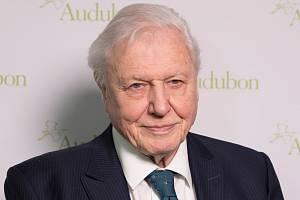 Britský přírodovědec a popularizátor vědy sir David Attenborough