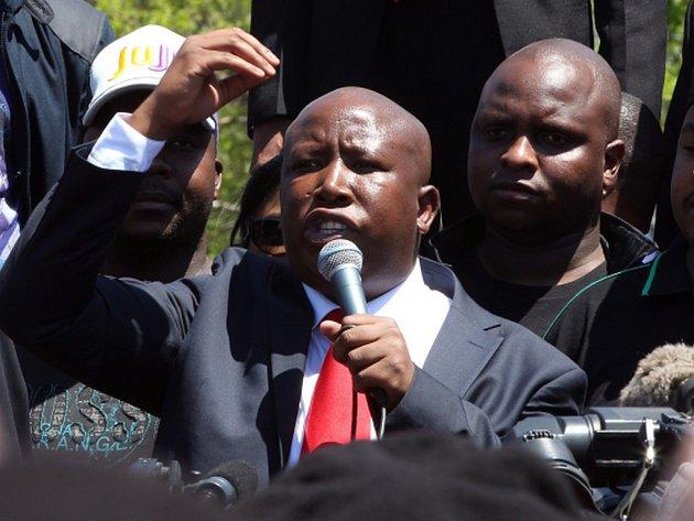 Kontroverzní politik Malema, kterého kvůli radikálním názorům vyloučili v roce 2012 z levicové vládní strany Africký národní kongres (ANC), před časem vyzval Jihoafričany, aby zničili upomínky na kolonialismus.