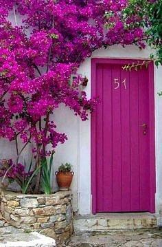Dveře mohou barevně ladit sokolní květenou.