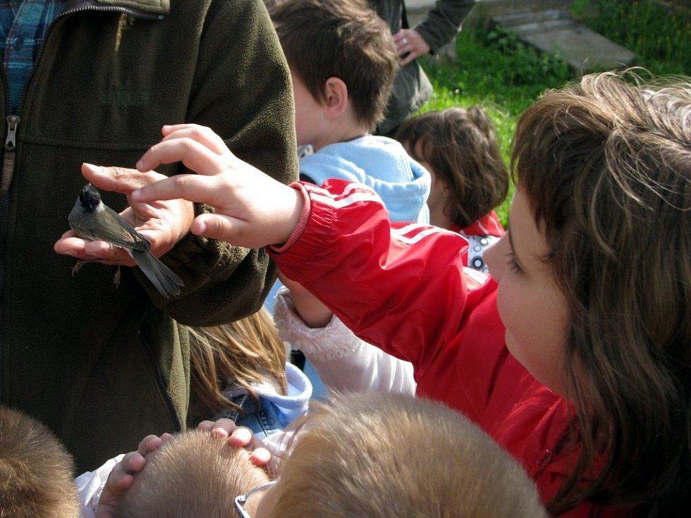 Den Země rodinného centra Kašpárek v Mělníku, ukázka dravců a povídání s ornitologem