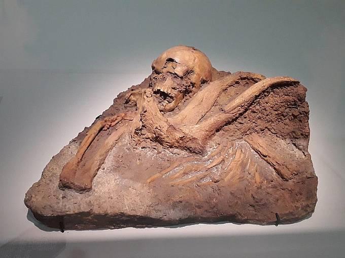 Fosílie neandertálce
