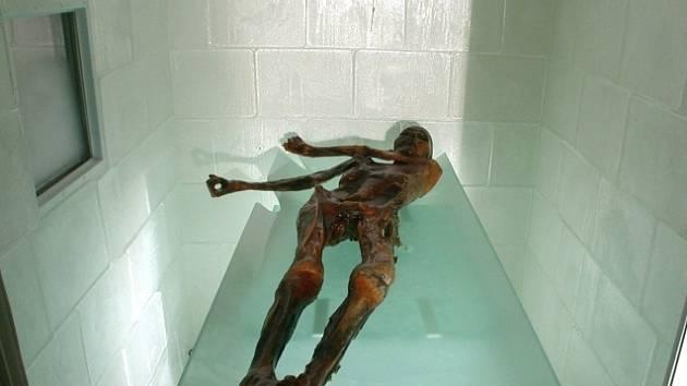 Mumie člověka z doby přibližně 3300 let př. n. l., která byla nalezenav roce 1991 na ledovci v Ötztalských Alpách.