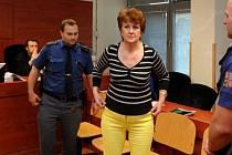 Bývalá zdravotní sestra Věra Marešová, která čelí obžalobě z vražd šesti pacientů rumburské nemocnice, netrpí žádnou duševní poruchou. U soudu to dnes řekl psychiatr Michal Hessler.