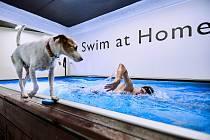 Jan Micka a jeho trénink (plavání)