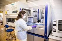 Vyhodnocování vzorků na koronavirus