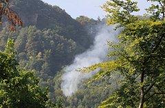 Požár, který ve švýcarském lese vznikl poté, co u něj havarovalo menší letadlo.