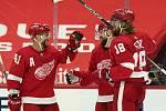 Filip Hronek slaví gól Detroitu