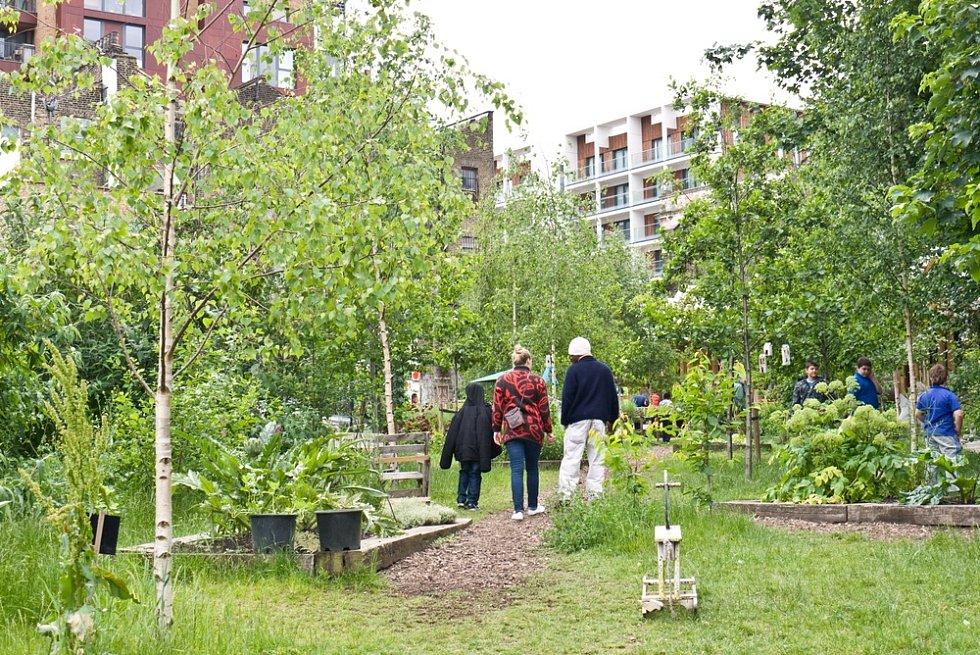 Ideálním místem pro komunitní zahradničení by se mohl stát městský dvorek nebo vnitroblok