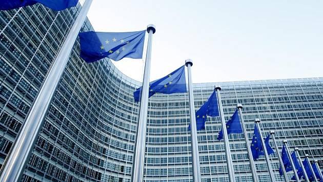 Osm skenerů, které umějí každého virtuálně svléci do naha, má od roku 2002 k dispozici Evropský parlament.