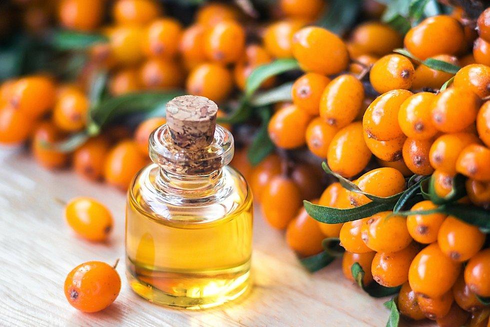 Z rakytníku se získávají léčivé oleje