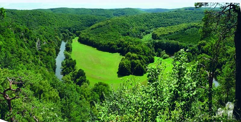 Jediný národní park na Moravě Podyjí je trochu jiný než horské oblasti. Láká kromě krásných výhledů na meandry řeky především unikátními zvířaty a rostlinami.