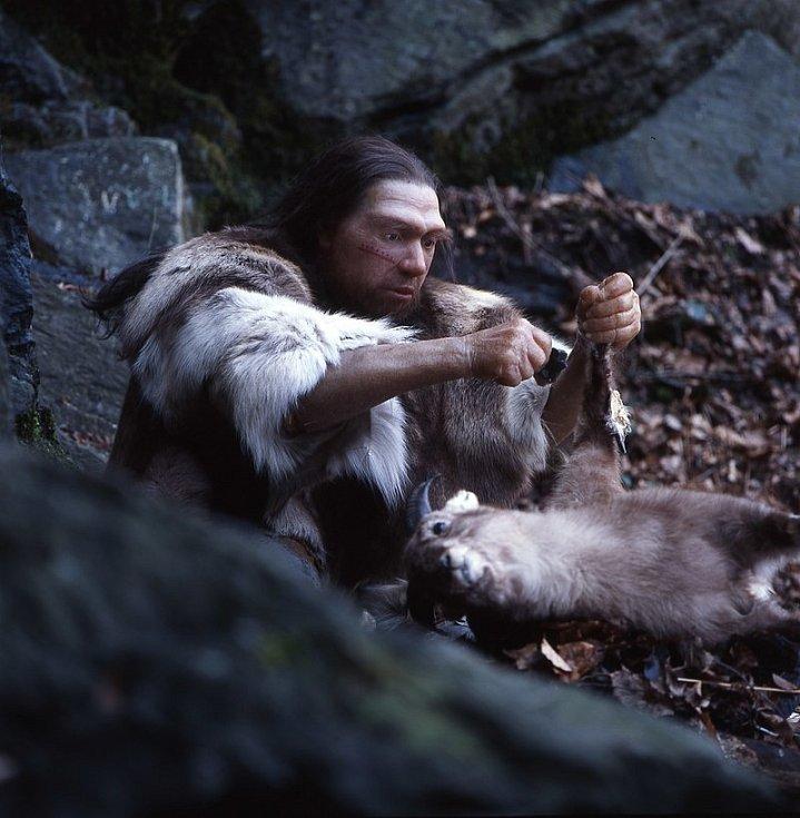 Rekonstrukce možné podoby neandertálského lovce