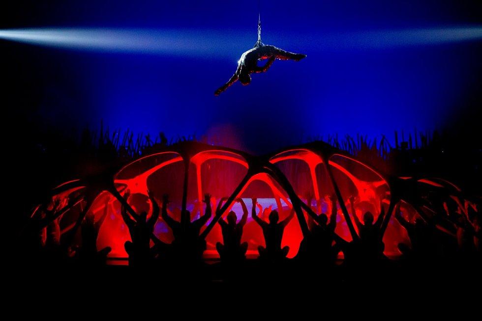 Vystoupení nového cirkusu jsou založená na mísení jednotlivých druhů umění, v představení se prolíná artistické vystoupení, tanec, hudba, film, sport, loutkové divadlo či výtvarné umění