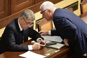 Premiér Andrej Babiš (vlevo) a předseda Poslaneckého klubu ANO Jaroslav Faltýnek