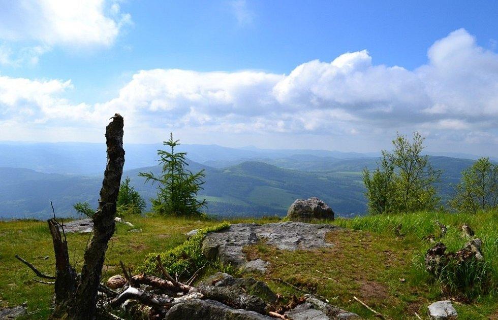 Lesní stezka na pomezí Čech a Saska