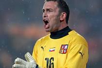 Brankář české fotbalové reprezentace Jaromír Blažek bude hrát na jaře s Norimberkem o záchranu.