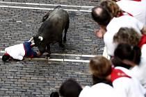 V jihošpanělském městečku Pedreguer zemřel v noci na dnešek jeden z účastníků místního běhu s býky, kterého zvíře nabralo na rohy a vážně mu poranilo hrudník a břicho.