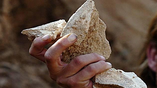 Úlomky pánevní kosti mamuta byly nalezeny i v Česku. Za kolik by se asi prodaly?