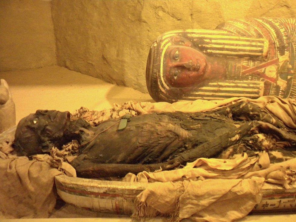 Mumie, kterou vystavuje Akademie přírodních věd ve Philadelphii.