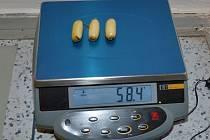 Pašerák kokainu vyloučil ze svého těla 41 kapslí. Každá z nich vážila rekordních 24 gramů.
