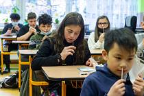 Testování žáků na ZŠ v Děčíně