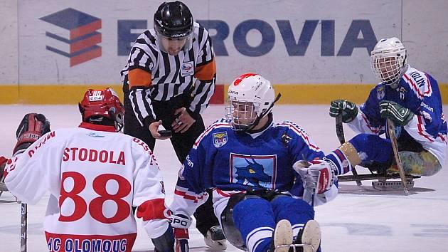 Sledge hokej - ilustrační foto.