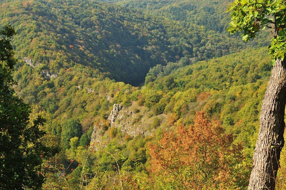 Thayatal. Okolí rakouského břehu je protějškem národního parku Podyjí na moravské straně Dyje.