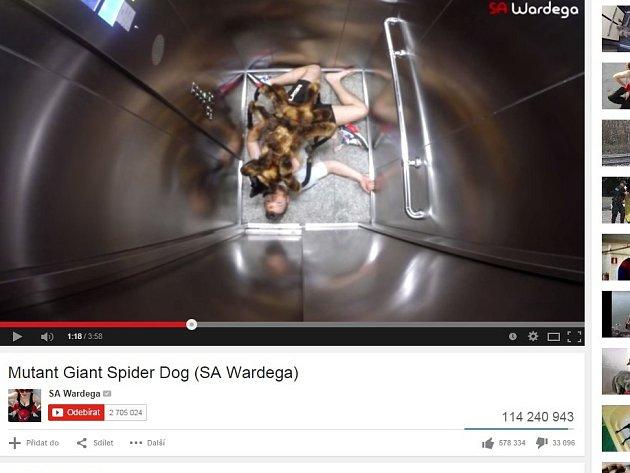 Nejsledovanějším videem roku se na serveru YouTube letos stala legrácka polského filmového amatéra Sylwestera Wardegy, který navlékl psa do kostýmu obřího pavouka.