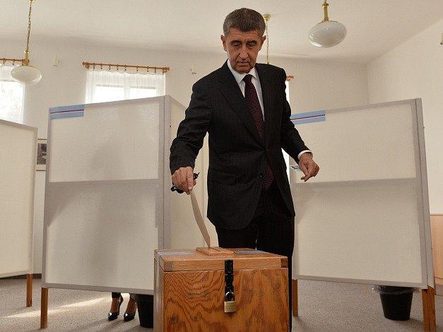 Předseda hnutí ANO Andrej Babiš odevzdal 10. října svůj hlas v komunálních volbách ve volební místnosti na Obecním úřadu v Průhonicích.