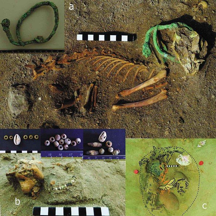 Obojky a korálky nalezené vedle koček. Nacházely se zde i doplňky používané při pohřbech opic