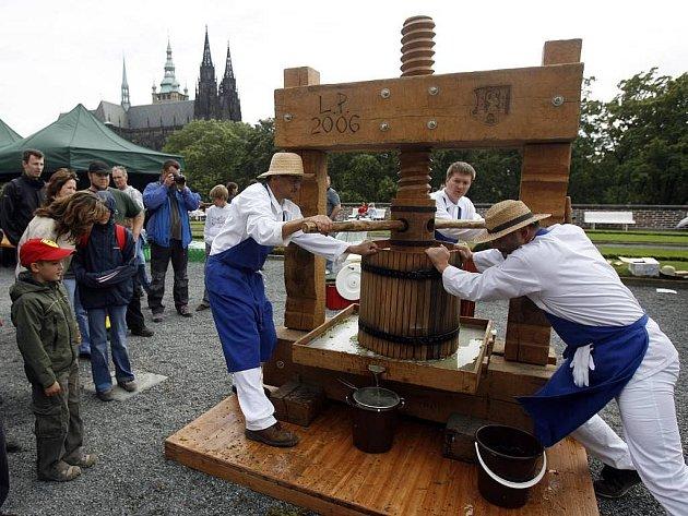 Vinobraní na Pražském hradě proběhlo v sobotu 5.září 2009. Na snímku Jan Zapletal z klubu kultury, organizace z Uherského Hradiště, který přivezl na Vinobraní k hradní Jízdárně přesnou repliku vinného historického lisu z 18.století.