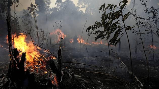 Hořící les nedaleko města Porto Velho v brazilském státě Rondonia