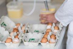 Kontrola vajec.